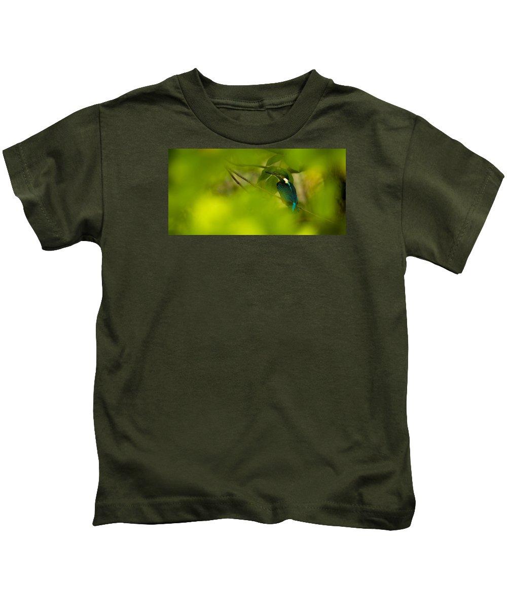 Hummingbird Kids T-Shirt featuring the photograph Hummingbird Wants To Hide by Gabor Tokodi