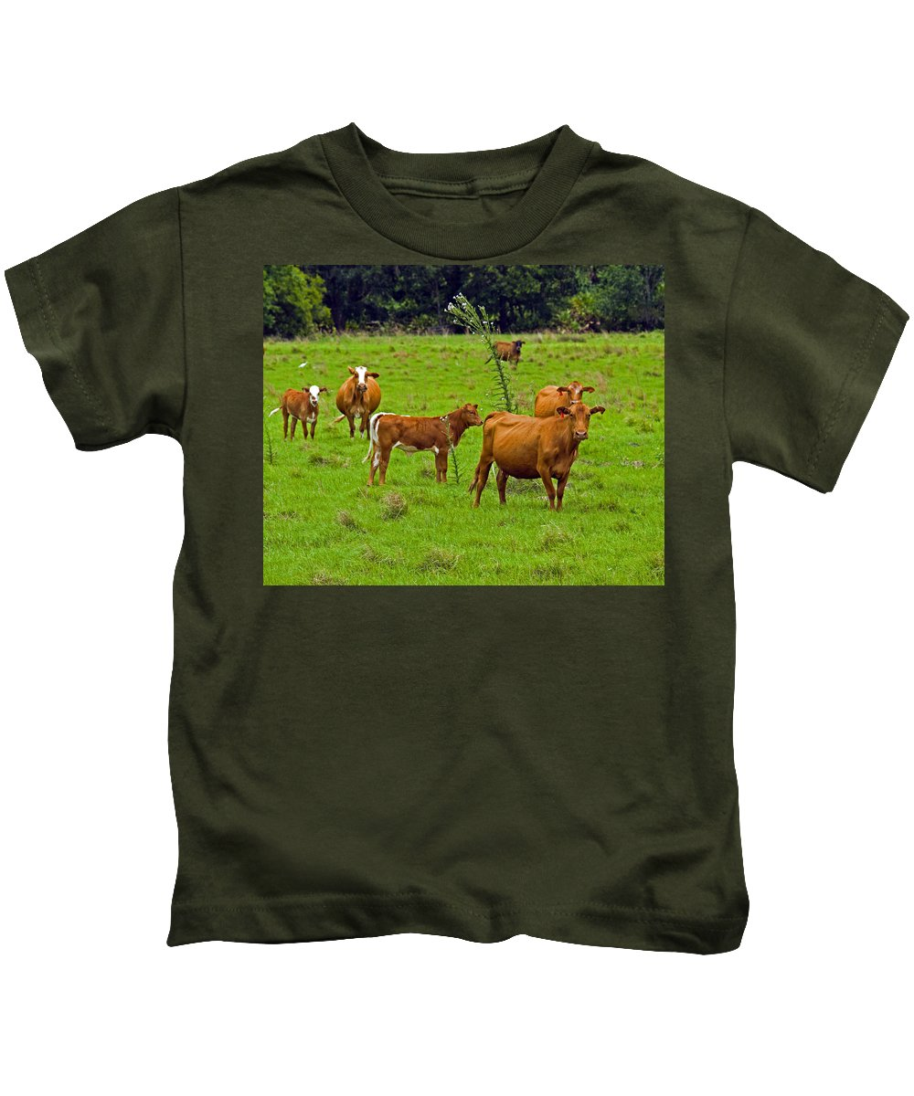 Black; Red; Angus; Brahman; Simmental; Red Poll; Hereford; Cattle; Braford; Cow; Cows; Bull; Milk; B Kids T-Shirt featuring the photograph Hybrid Cattle On The Deseret Ranch In East Central Florida by Allan Hughes