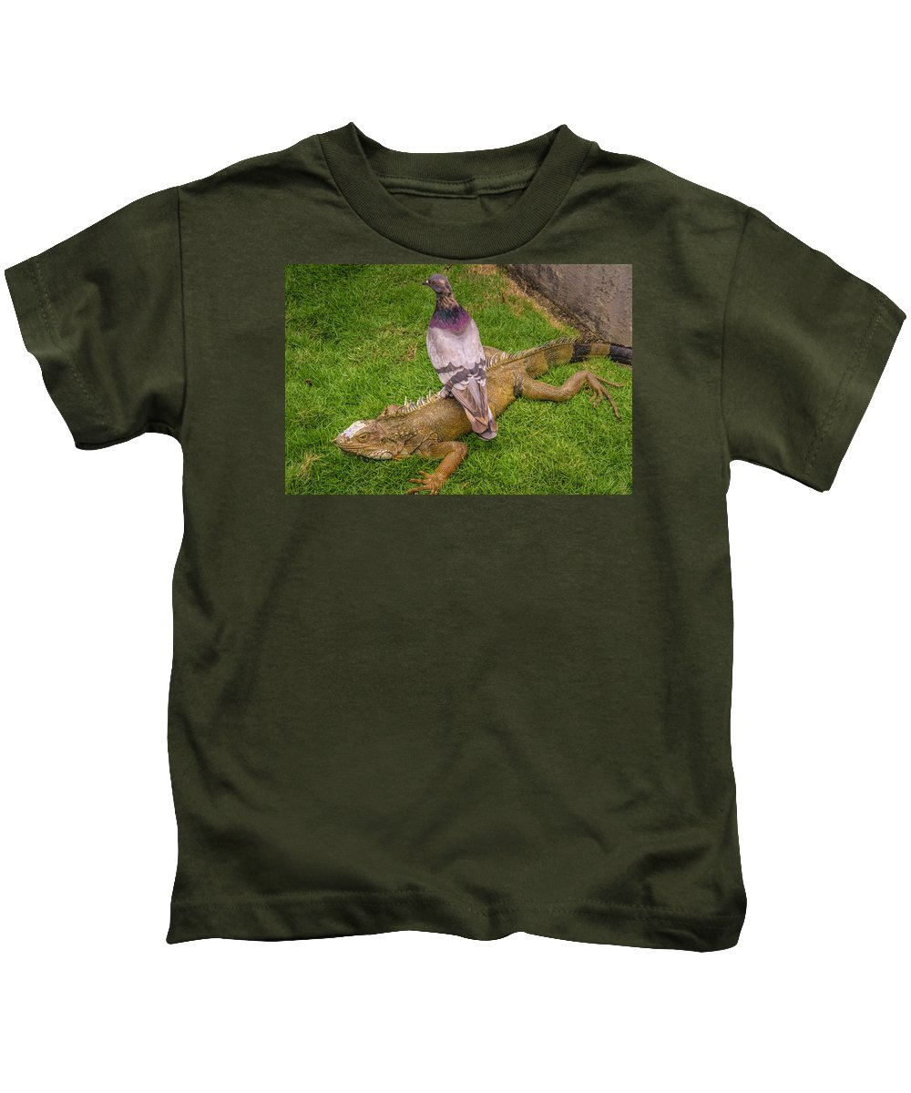 Ecuador Kids T-Shirt featuring the photograph Iguana With Pigeon On Its Back by Janice Bennett