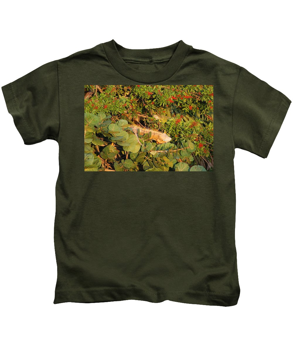 Sunset Kids T-Shirt featuring the photograph Iguanas by Rob Hans