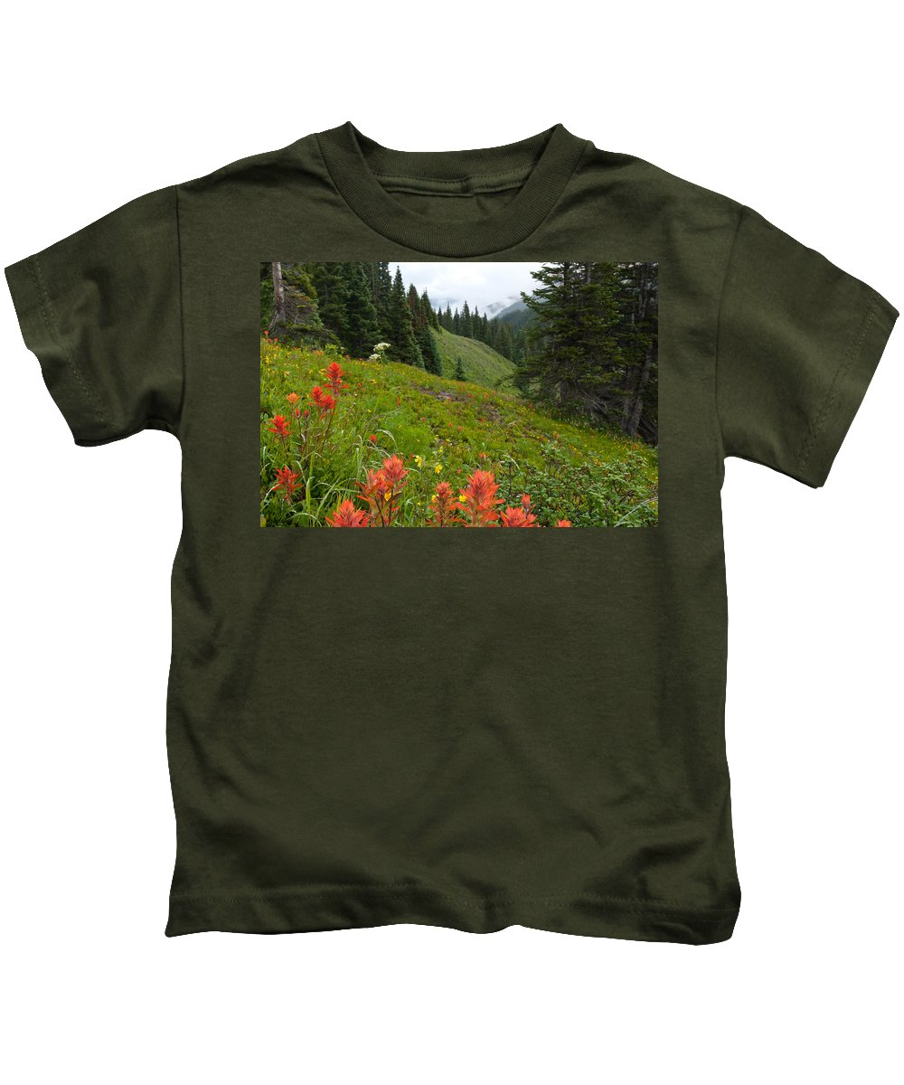 Clouds Kids T-Shirt featuring the photograph Indian Paintbrush Window Into The San Juans by Cascade Colors