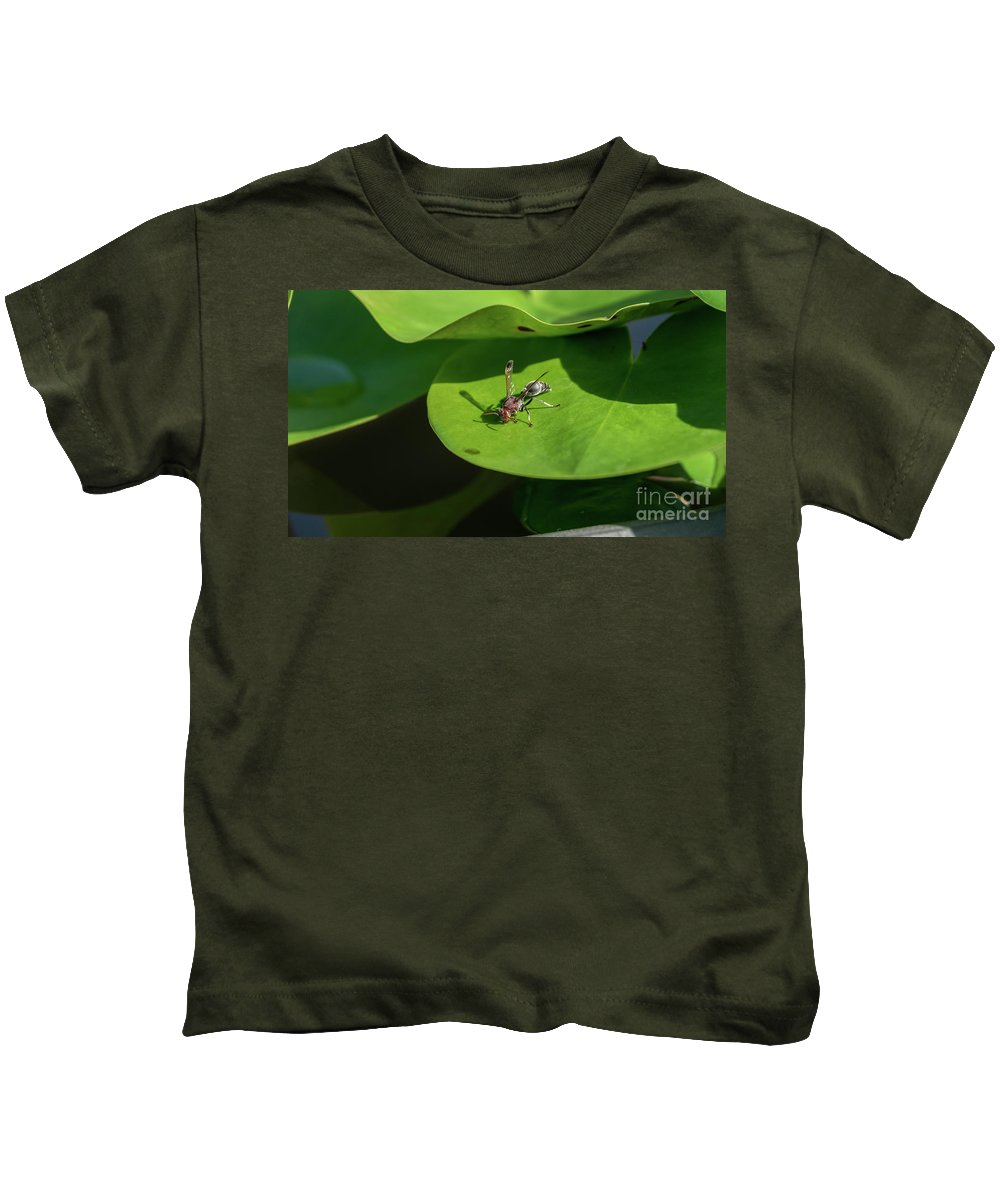 Leaf Kids T-Shirt featuring the photograph Insect On Lotus Leaf by Que Siam