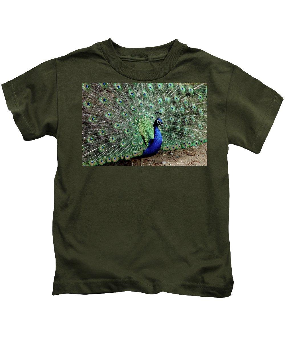 Usa Kids T-Shirt featuring the photograph Iridescent Blue-green Peacock by LeeAnn McLaneGoetz McLaneGoetzStudioLLCcom