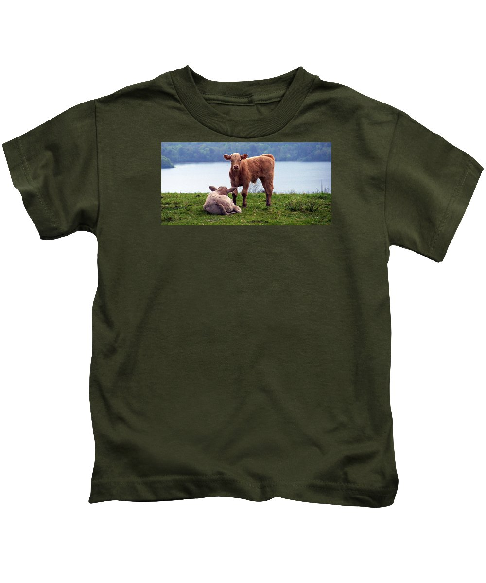 Ireland Kids T-Shirt featuring the photograph Irish Calves At Lough Eske by Teresa Mucha