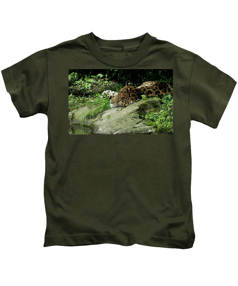 Jaguar Kids T-Shirt featuring the digital art Jaguar by Dorothy Binder
