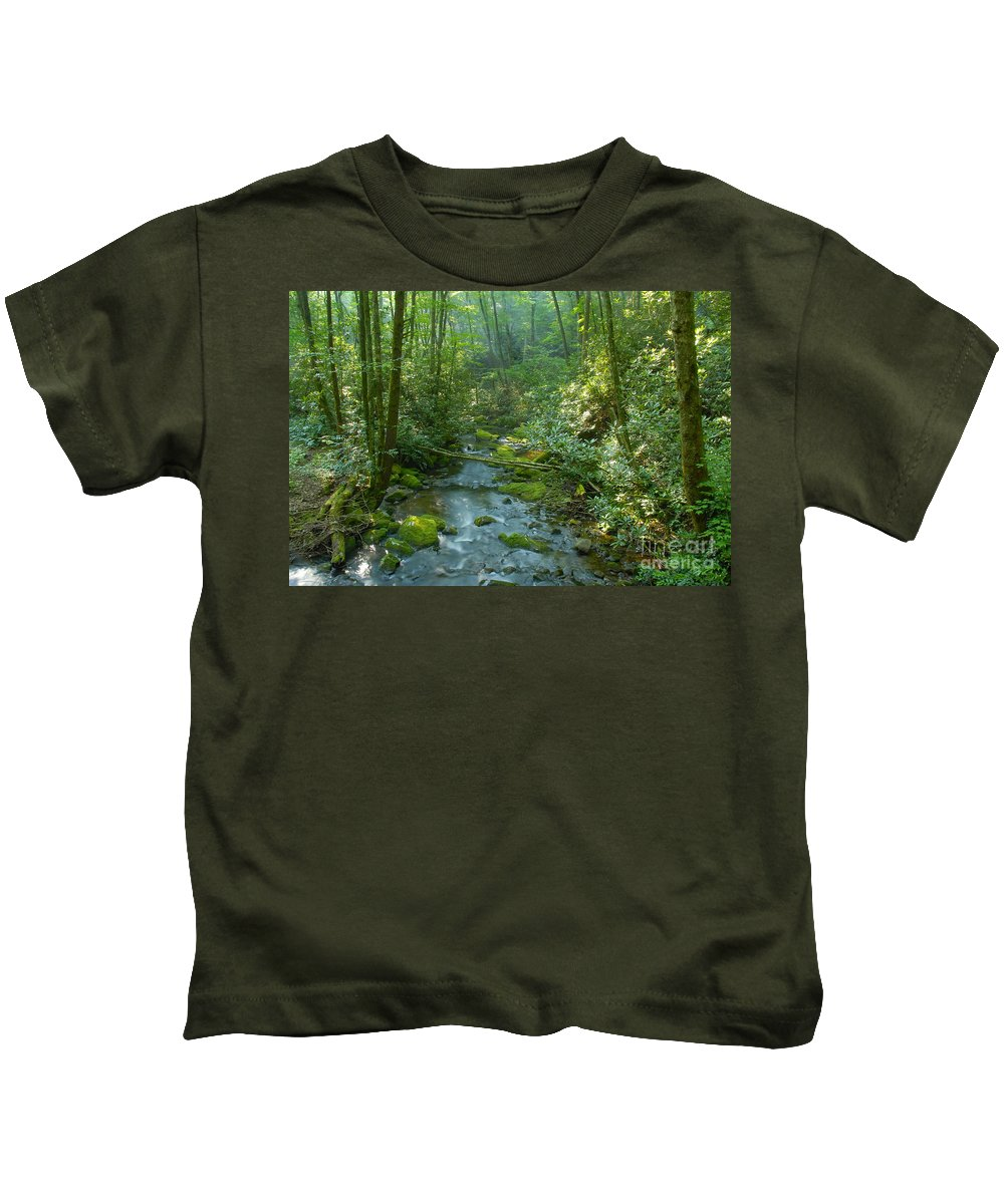 Joyce Kilmer Memorial Forest Kids T-Shirt featuring the photograph Joyce Kilmer Memorial Forest by David Lee Thompson
