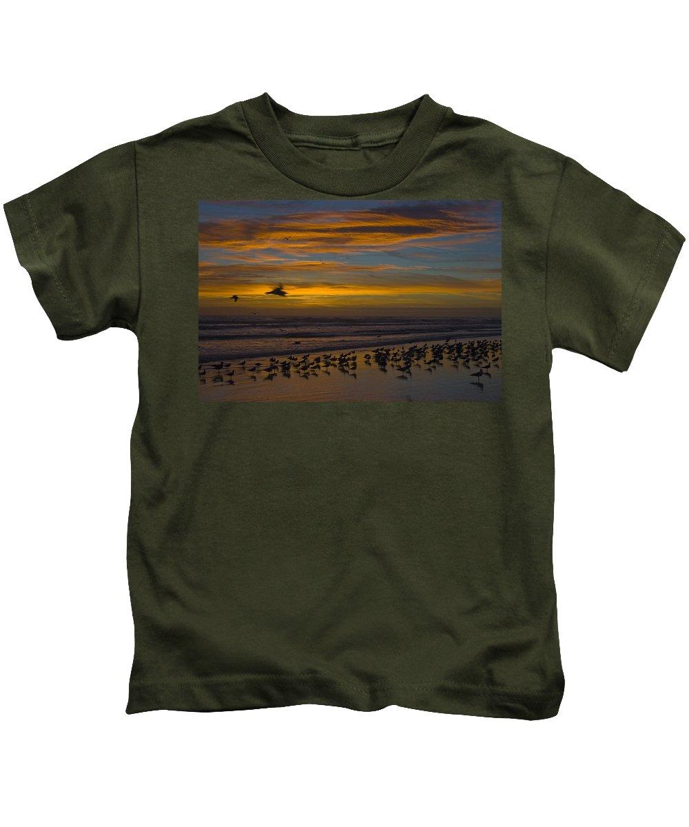 Beach Morning Sunrise Ocean Bird Birds Seagulls Gull Gulls Sand Water Wave Waves Cloud Sky Kids T-Shirt featuring the photograph Joyful Gathering by Andrei Shliakhau