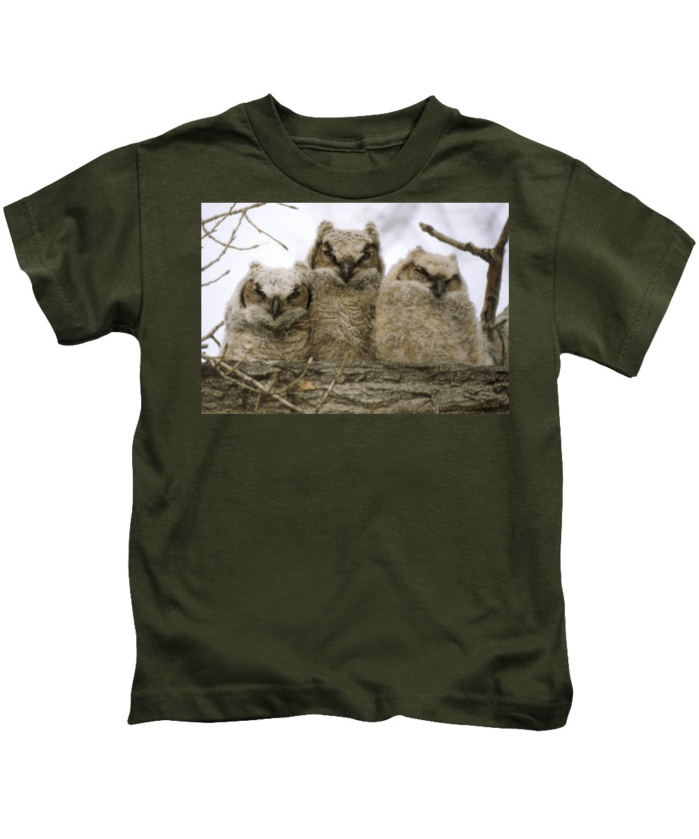 Owls Kids T-Shirt featuring the photograph Just Babies by Jerry McElroy