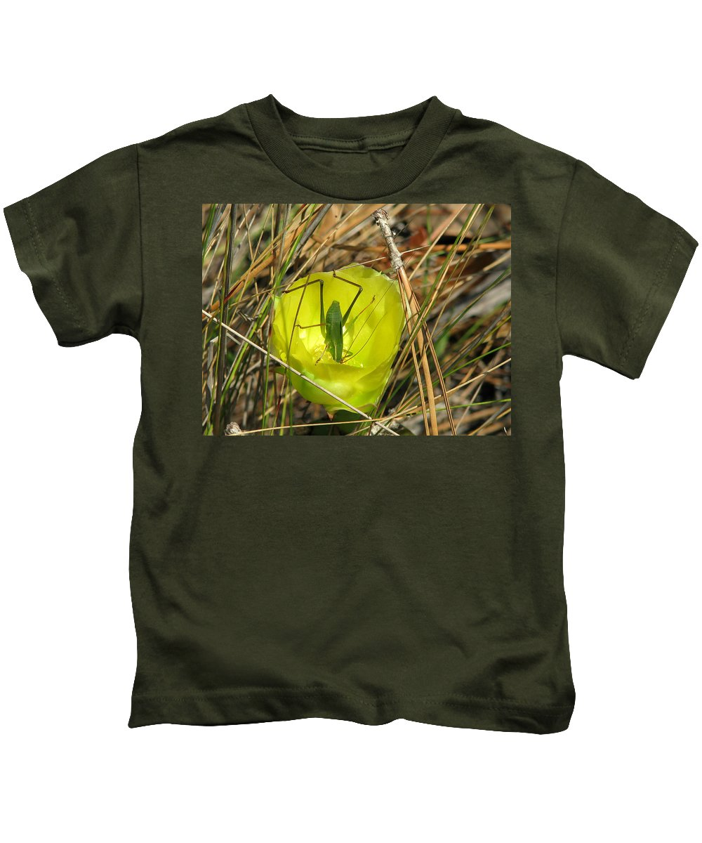 Florida Kids T-Shirt featuring the photograph Katydid What by Peg Urban