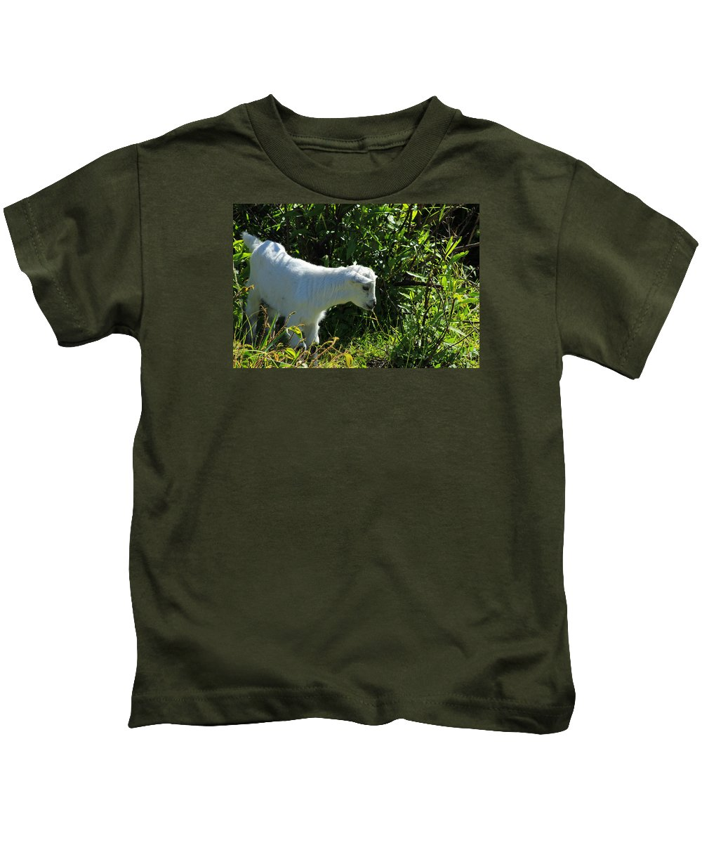 Goat Kids T-Shirt featuring the photograph Kid Goat In Bushes by Robert Hamm