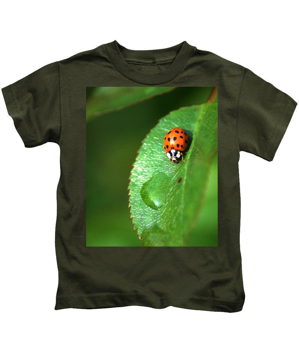 Ladybird Kids T-Shirt featuring the photograph Ladybird by Chris Day