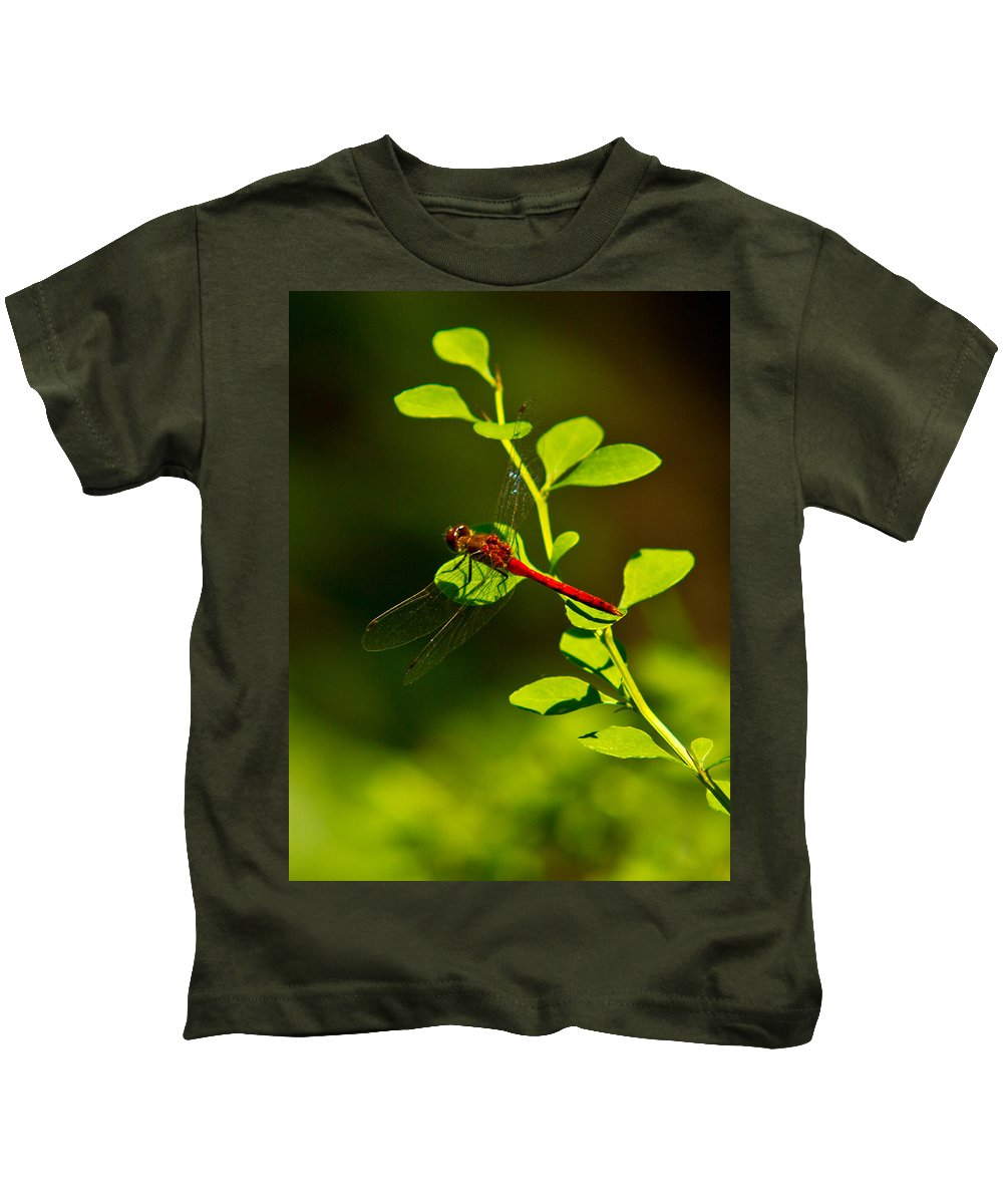 Insects Kids T-Shirt featuring the photograph Landing Pad by Frank Pietlock