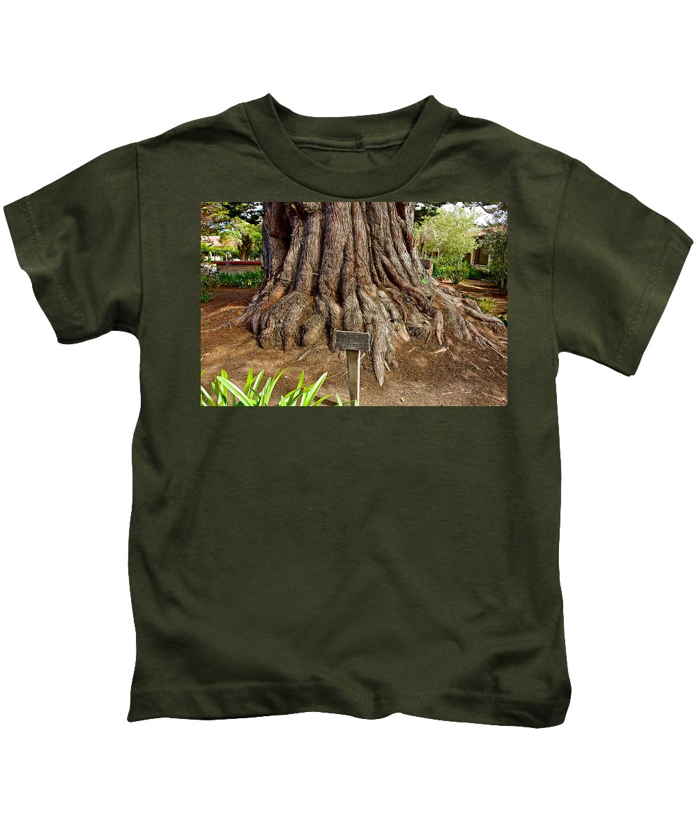 Large Cypress Tree Trunk In Carmel Mission Kids T-Shirt featuring the photograph Large Cypress Tree Trunk In Carmel Mission-california by Ruth Hager