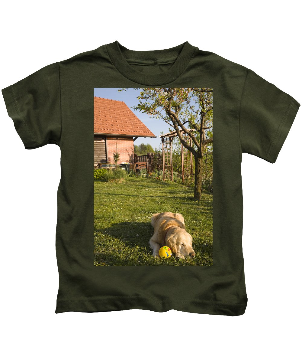 Animals Kids T-Shirt featuring the photograph Lazy Days by Ian Middleton