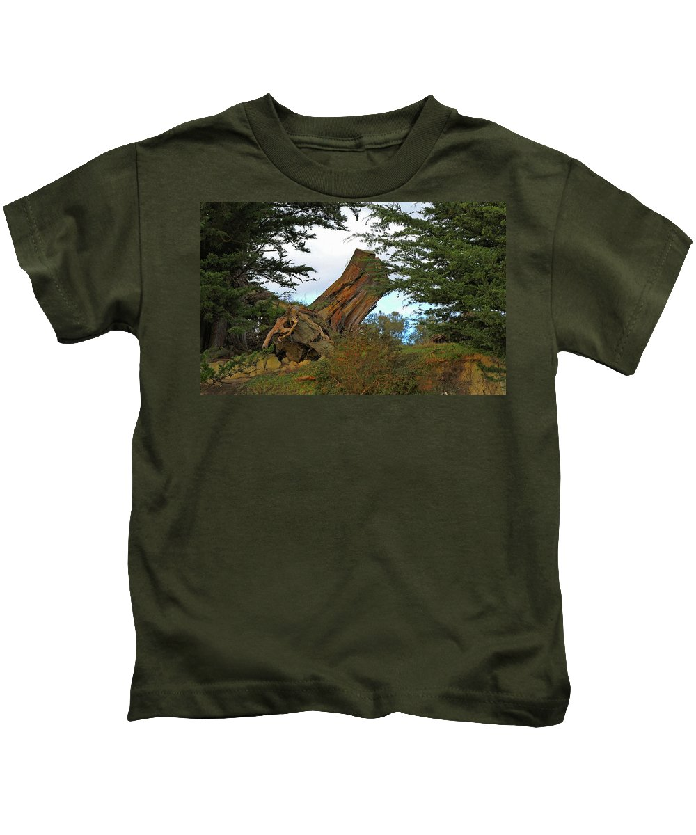 Treetrunk Kids T-Shirt featuring the photograph Leaning Trunk by Nareeta Martin