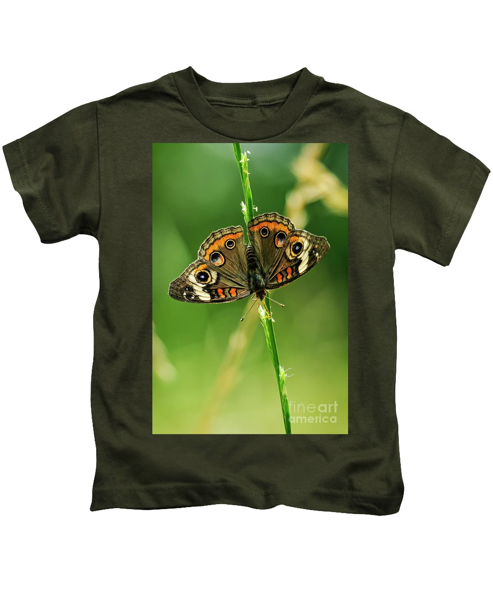 Art Kids T-Shirt featuring the photograph Lepidoptera by Charles Dobbs