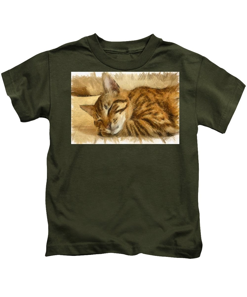 Tabby Cat Kids T-Shirt featuring the drawing Let Sleeping Cats Lie by Taiche Acrylic Art