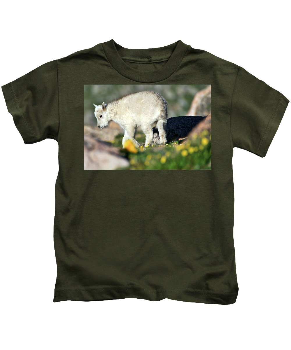 Wildlife Kids T-Shirt featuring the photograph Life Begins In The Spring by Scott Mahon