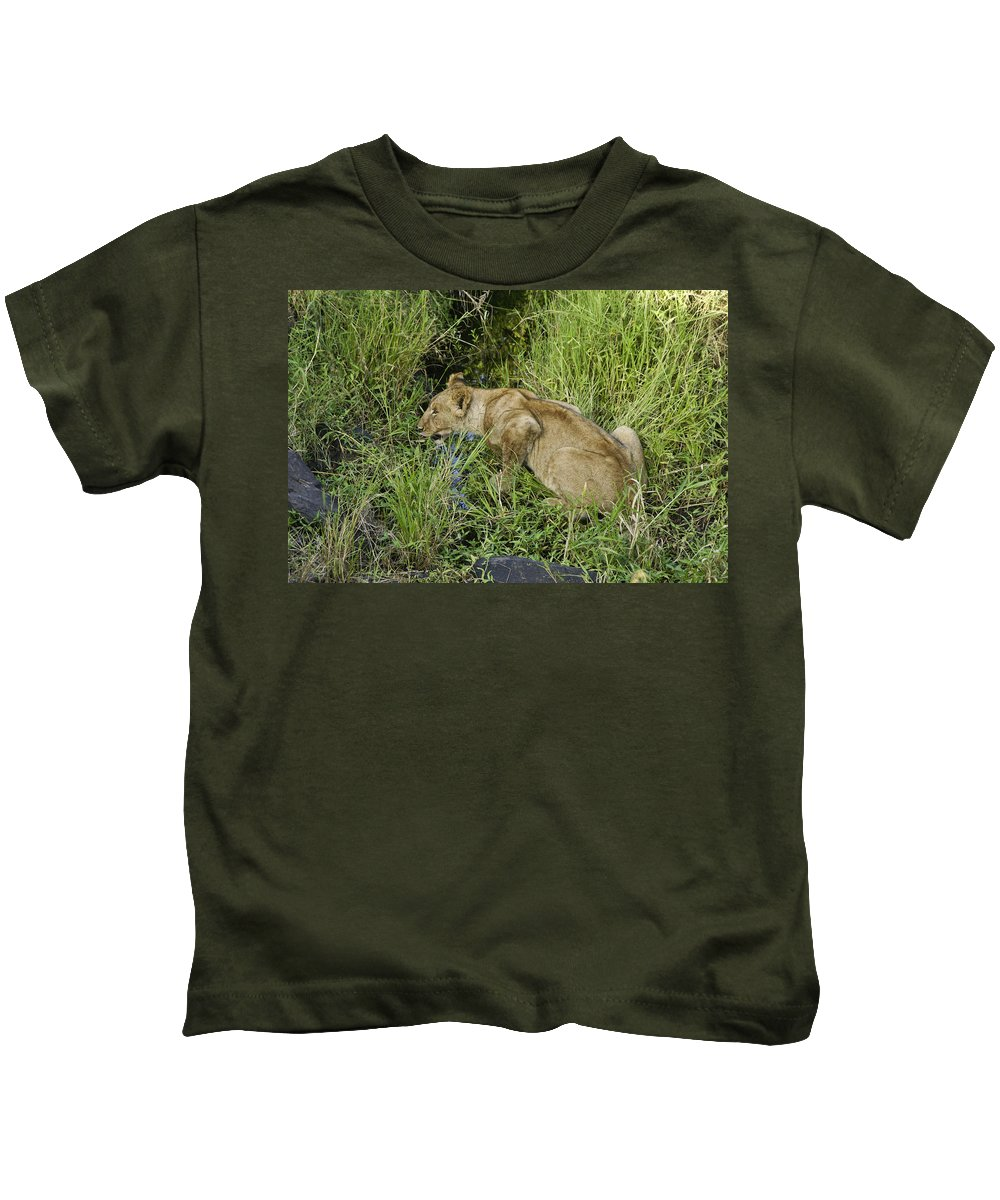 Africa Kids T-Shirt featuring the photograph Lion In A Cool Glade by Michele Burgess