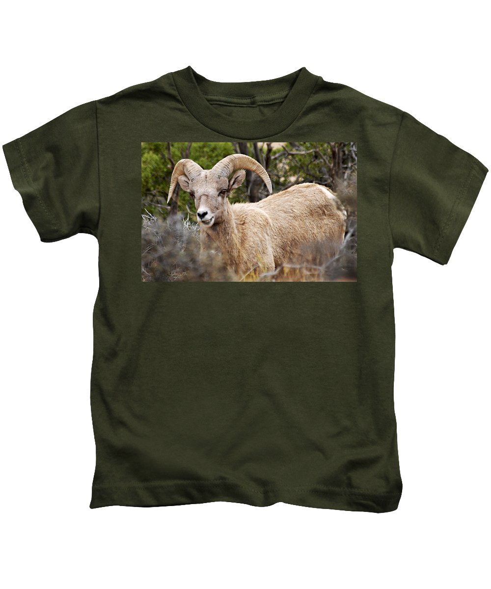 Bighorn Canyon National Recreation Area Kids T-Shirt featuring the photograph Looking At You Kid by Larry Ricker