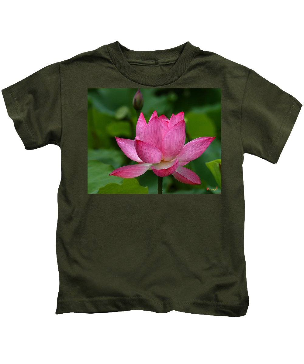 Nature Kids T-Shirt featuring the photograph Lotus--shades Of Past And Future Dl029 by Gerry Gantt