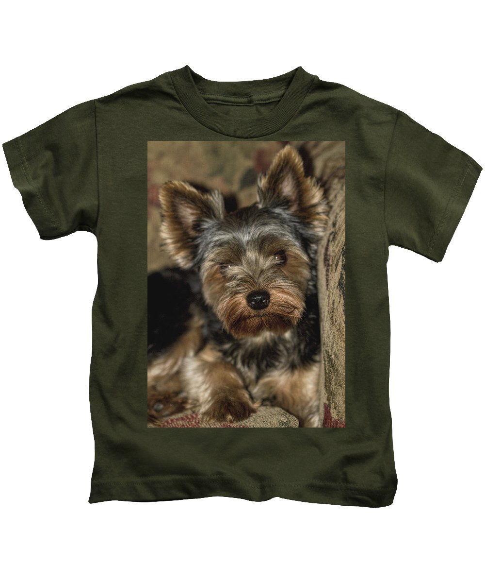 Yorkie Kids T-Shirt featuring the photograph Loveable Yorkie by Kathy Clark