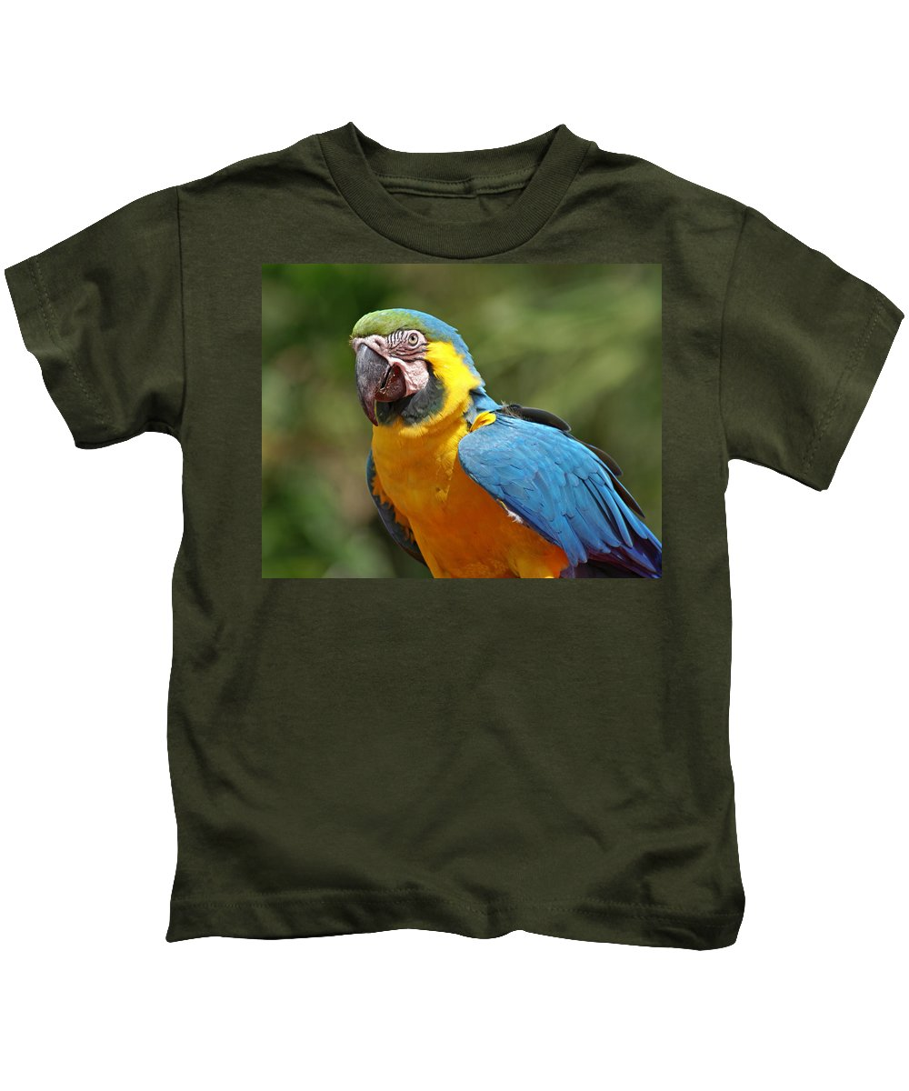 Parrot Kids T-Shirt featuring the photograph Macaw by Heather Coen