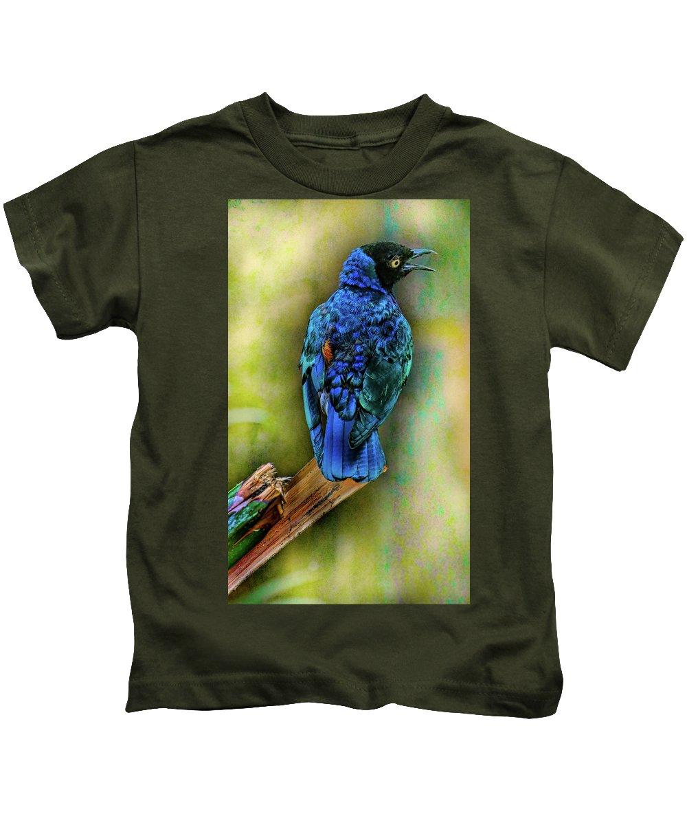 Bird Kids T-Shirt featuring the photograph Male Fairy Bluebird by Allen Beatty