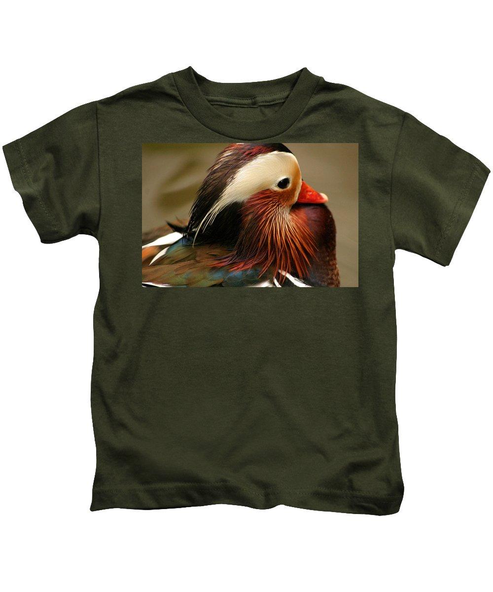 Mandarin Duck Kids T-Shirt featuring the photograph Male Mandarin Duck China by Ralph A Ledergerber-Photography