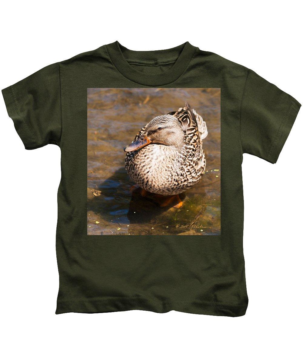 Heron Heaven Kids T-Shirt featuring the photograph Mallard Hen by Edward Peterson