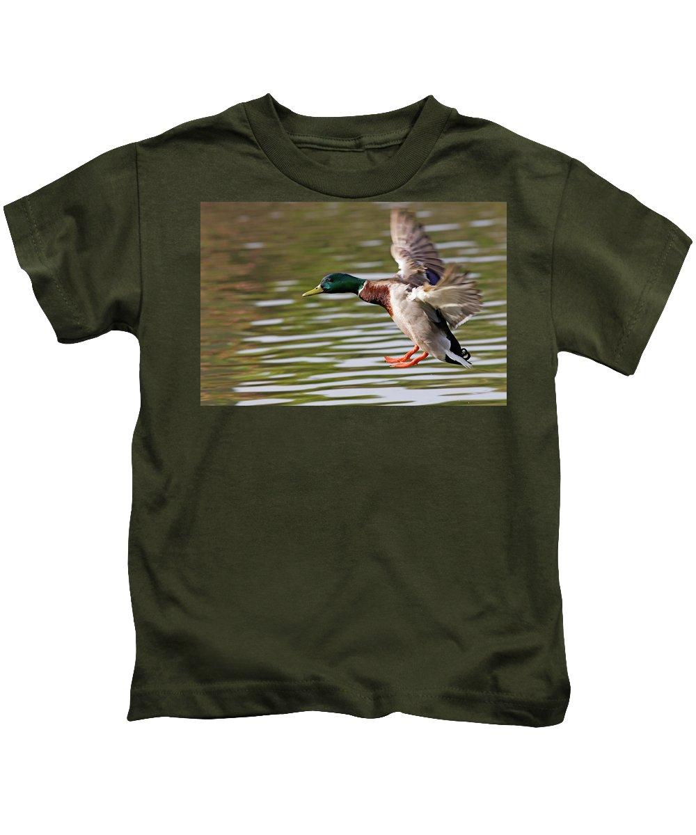 Mallard Kids T-Shirt featuring the photograph Mallard Landing by Randall Ingalls
