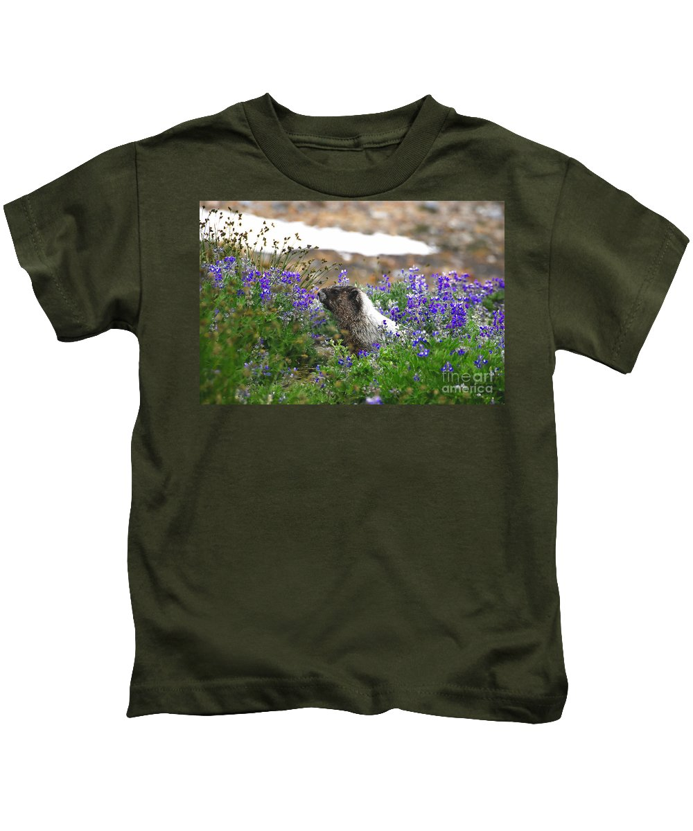Marmot Kids T-Shirt featuring the photograph Marmot In The Wildflowers by David Lee Thompson