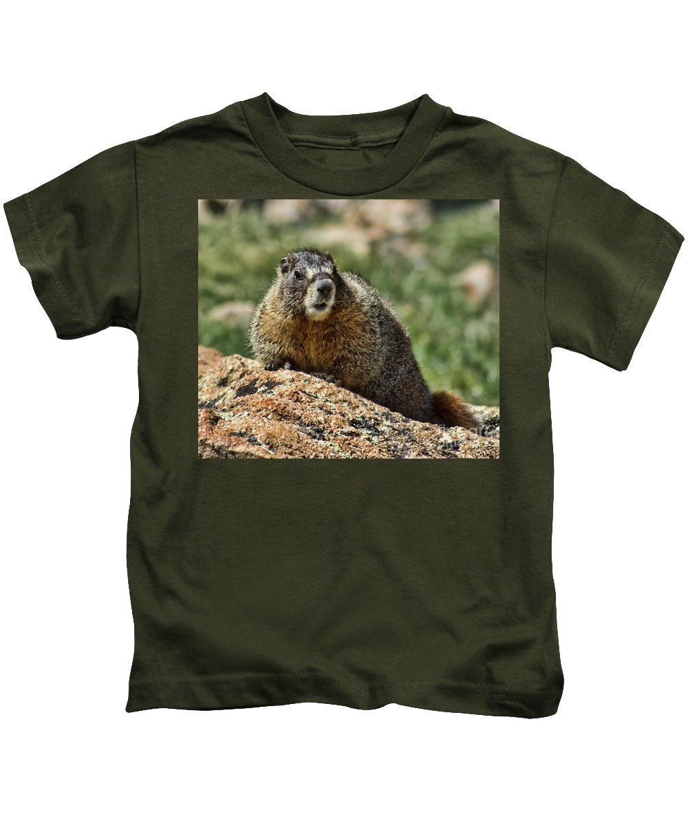 Animal Kids T-Shirt featuring the photograph Marmot by Steven Parker