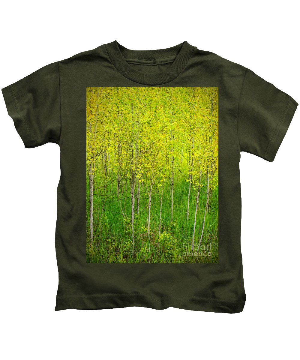 Trees Kids T-Shirt featuring the photograph May 25 2010 by Tara Turner