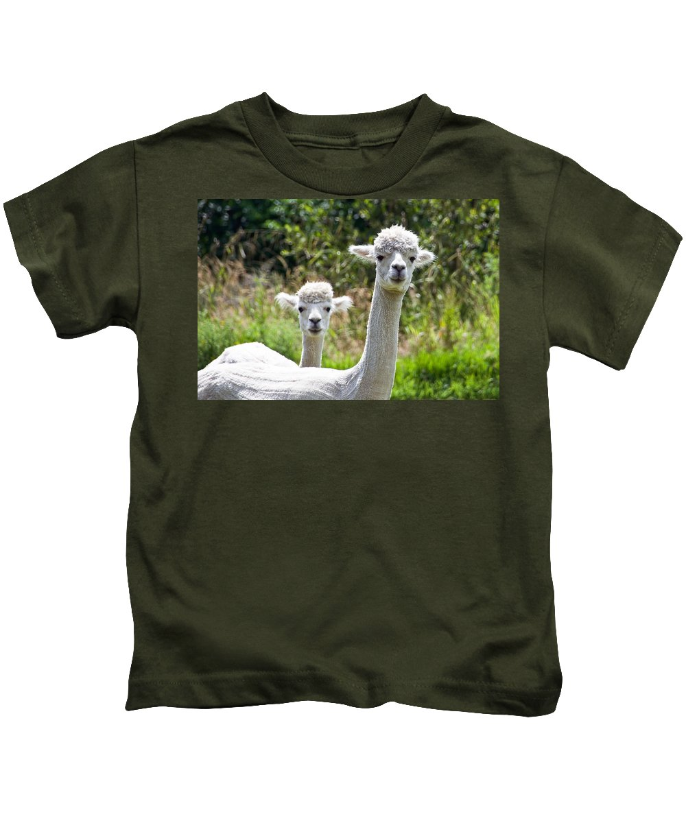 Alpaca Kids T-Shirt featuring the photograph Me And My Sidekick by Susie Peek