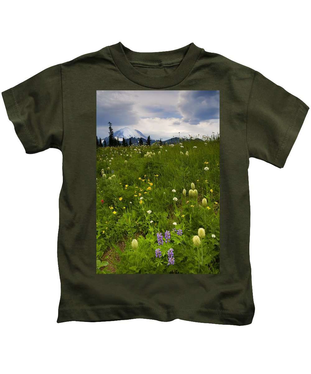 Rainier Kids T-Shirt featuring the photograph Meadow Beneath The Storm by Mike Dawson