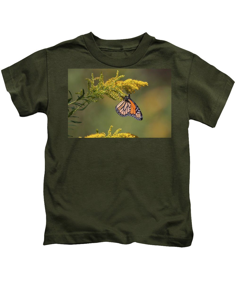 Ronnie Maum Kids T-Shirt featuring the photograph Monarch On Goldenrod by Ronnie Maum