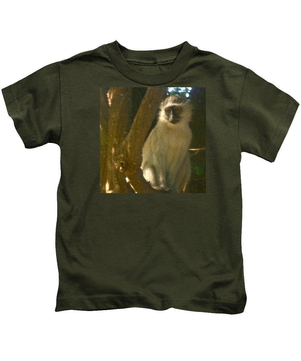 Karen Zuk Rosenblatt Art And Photography Kids T-Shirt featuring the photograph Monkey In The Tree by Karen Zuk Rosenblatt