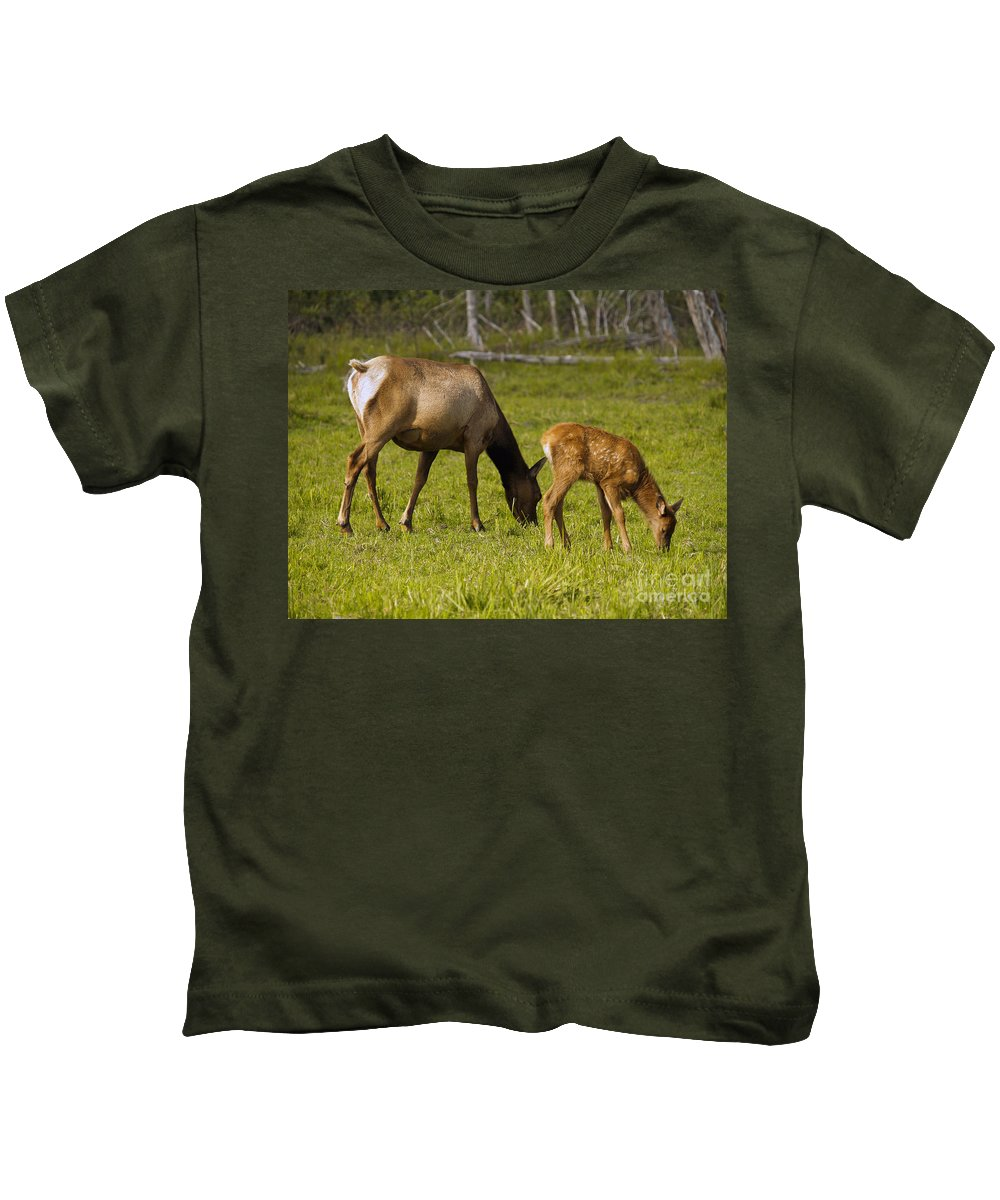 Elk Kids T-Shirt featuring the photograph Mother Elk And Fawn by Denise McAllister