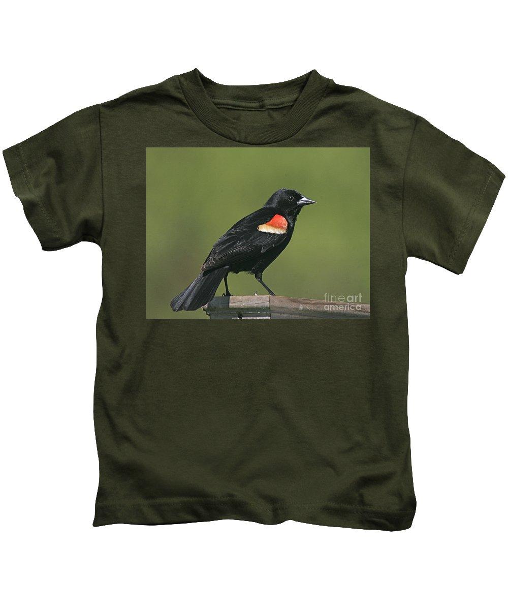 Bird Kids T-Shirt featuring the photograph Mr Blck Bird by Robert Pearson