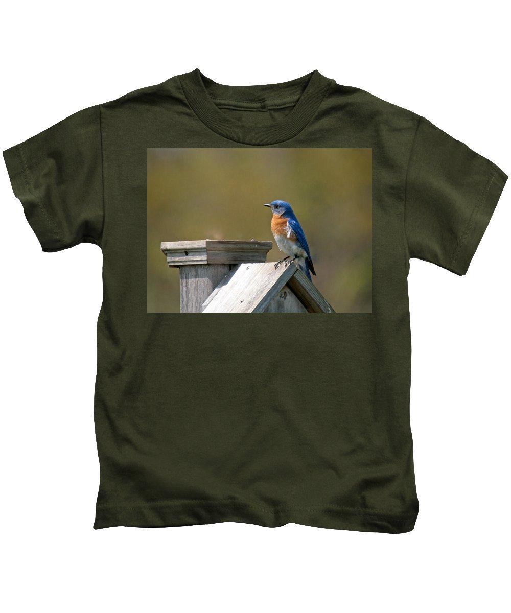 Blue Bird Kids T-Shirt featuring the photograph Mr Blue Bird by Robert Pearson