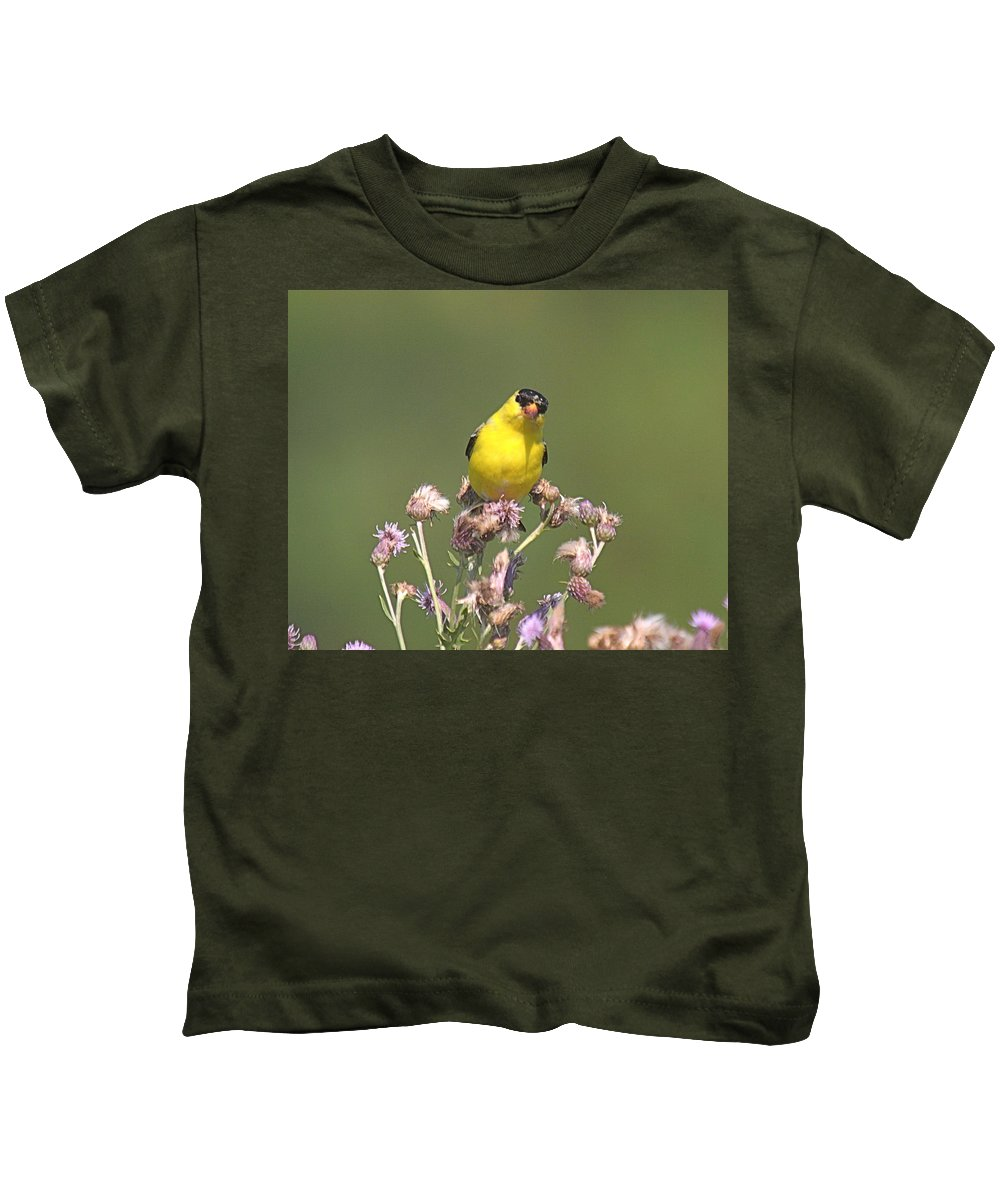Bird Kids T-Shirt featuring the photograph Mr Gold Finch by Robert Pearson