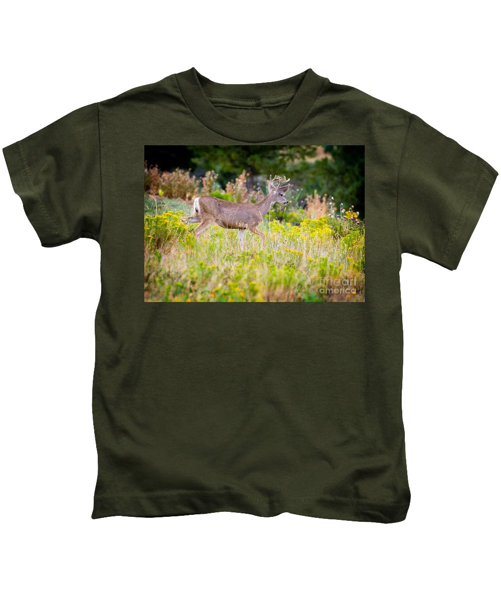 Mule Deer Kids T-Shirt featuring the photograph Mule Deer by Matt Suess