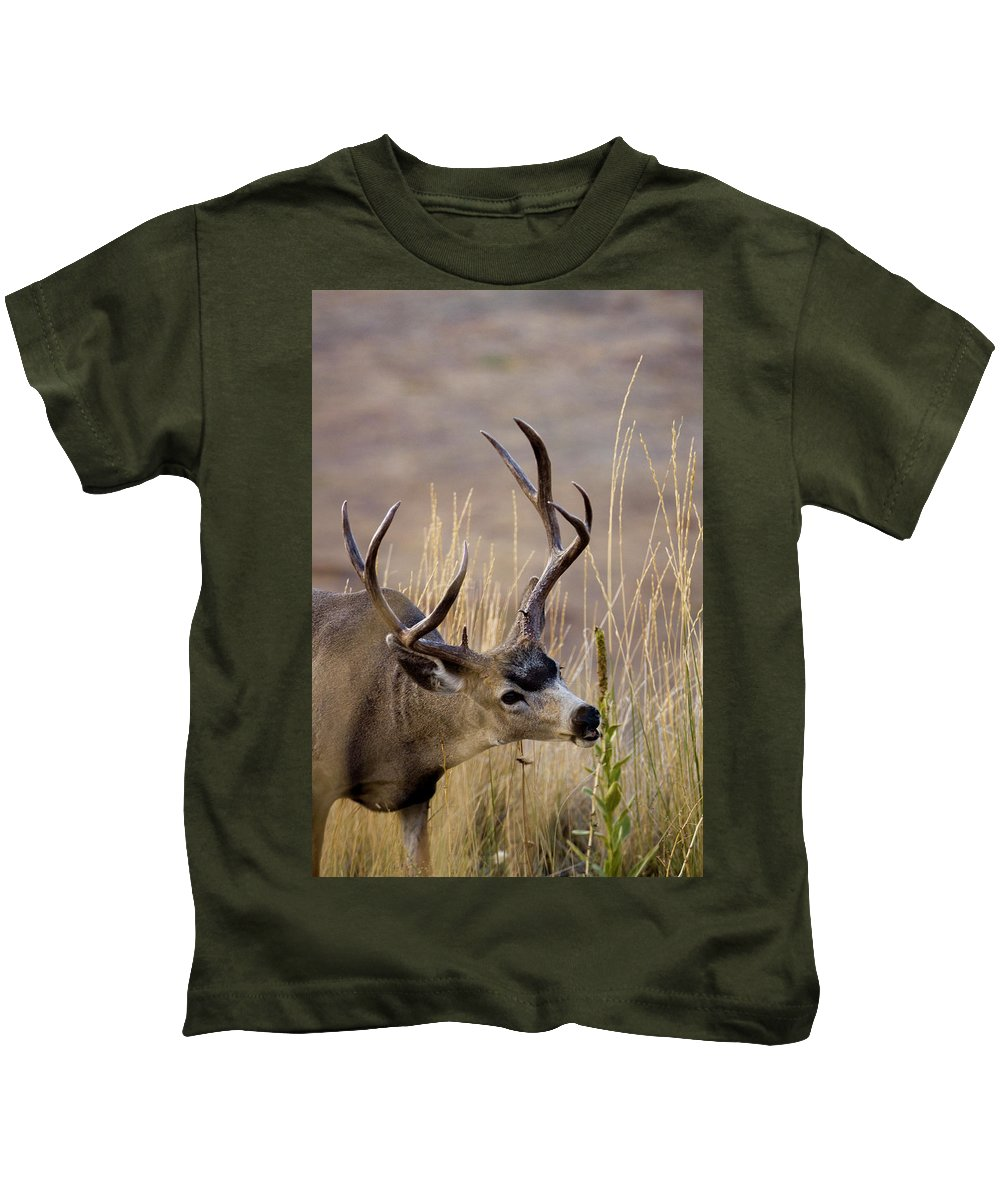 Wildlife Kids T-Shirt featuring the photograph Munching On Mullein by Albert Seger