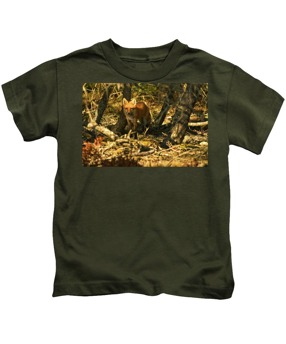 red Fox Kids T-Shirt featuring the photograph My Friend Red by Paul Mangold