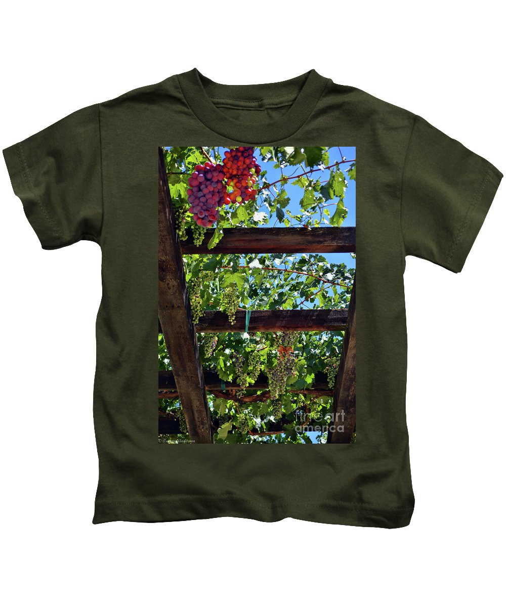 Inglenook Vineyard Kids T-Shirt featuring the photograph Napa Valley Inglenook Vineyard -2 by Tommy Anderson