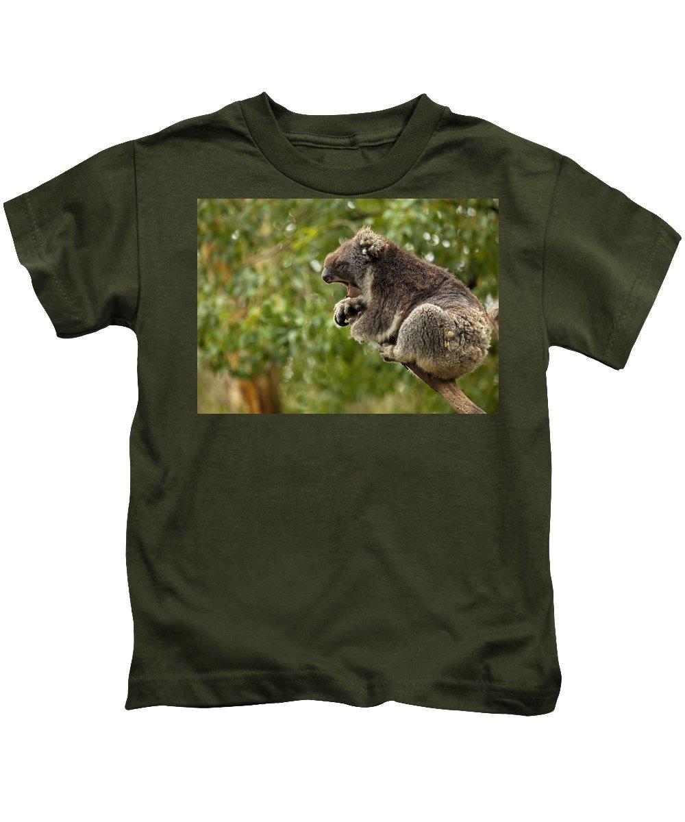 Koala Kids T-Shirt featuring the photograph Naptime by Mike Dawson