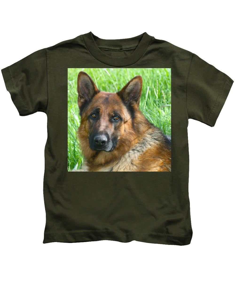Dog Kids T-Shirt featuring the photograph Nobility by Karon Melillo DeVega