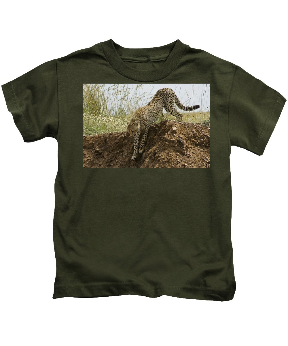 Africa Kids T-Shirt featuring the photograph Not As Easy As It Looks by Michele Burgess