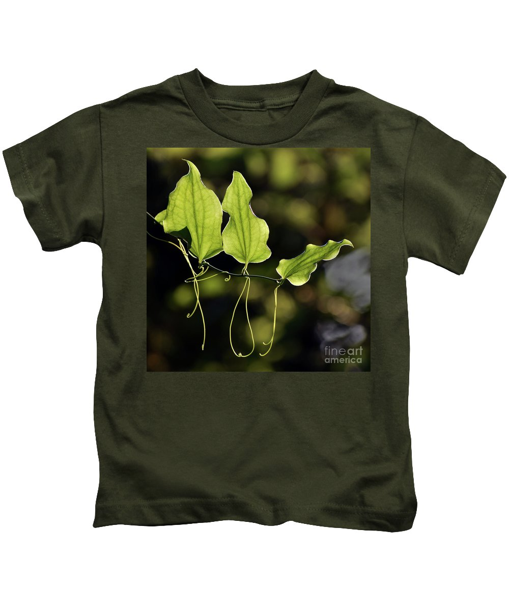 Insects Kids T-Shirt featuring the photograph Of Veins And Tendrils by Skip Willits